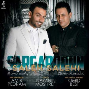 دانلود آهنگ صالح صالحی سرگردون Saleh Salehi Sargardoon